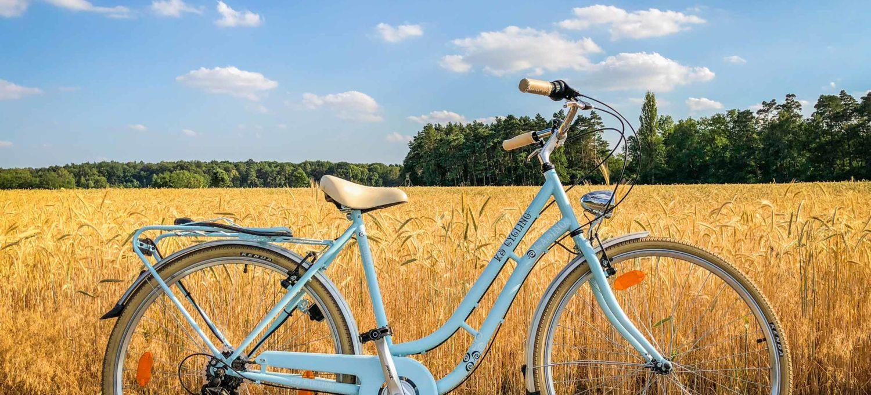 Fahrrad am Feldrand