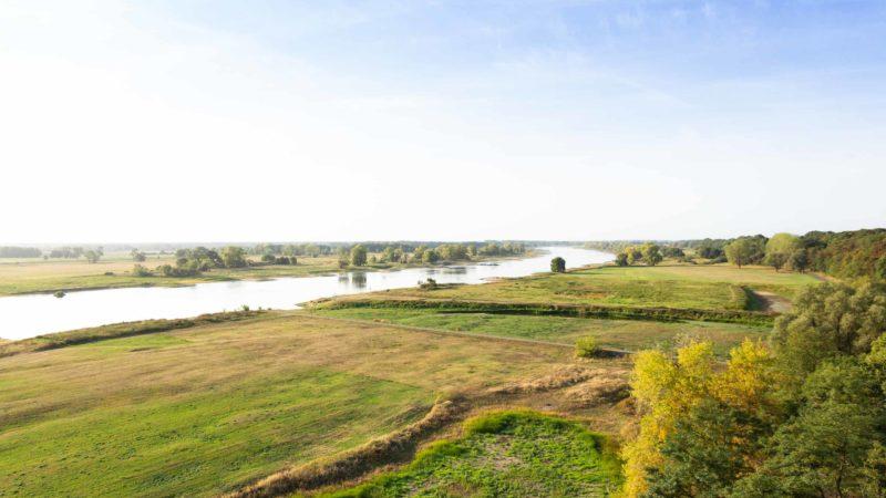 Blick über die Elbe bei Arneburg